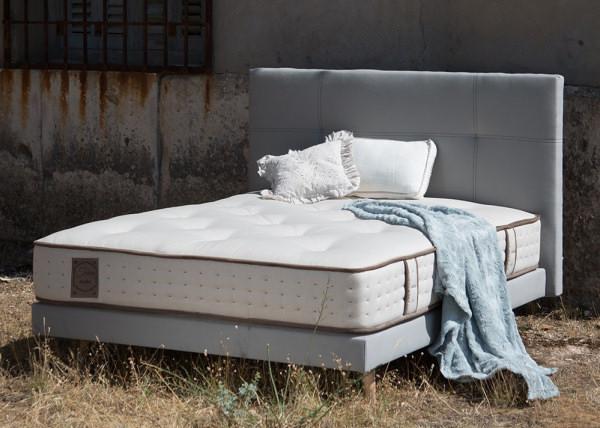 base bedbase Alma